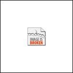 Green Hand Scraper 12 inch