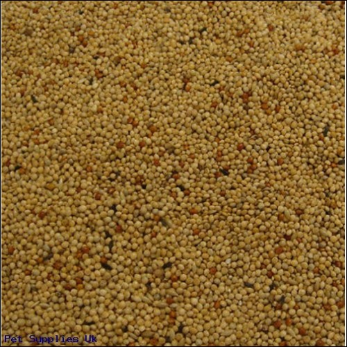 Colonels Foreign Finch Seed 2 kg